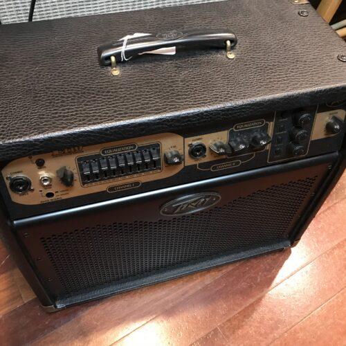 Peavey E110 acoustic amp