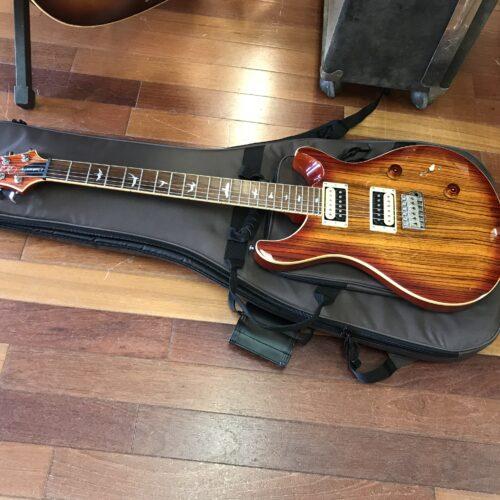 Paul Reed Smith SE Custom
