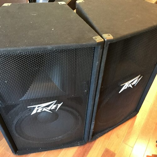 New Peavey PV 115 PA Speakers