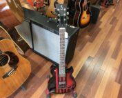 2013 Sublime guitar