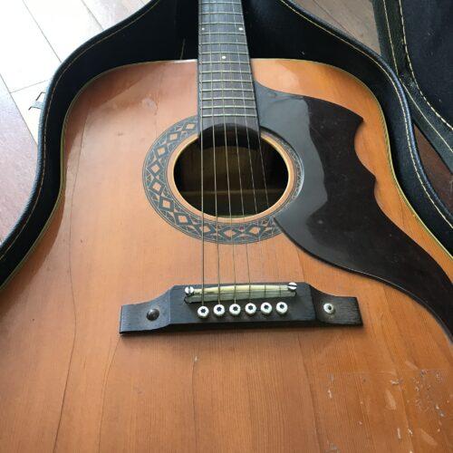 Eko acoustic
