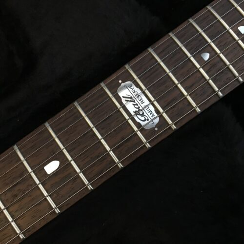 Ernie Ball John Petrucci Signature